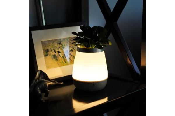 Ночной светильник в виде вазы