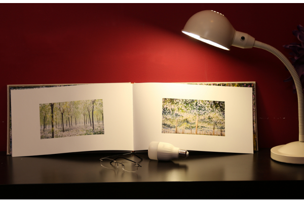 Умная лампочка Xiaomi Yeelight Smart LED BULB 1S RGB